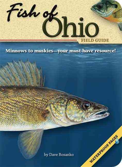 Fish of Ohio Field Guide By Bosanko, Dave